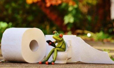 Que manger quand on a la diarrhée ?