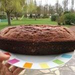 gâteau moelleux au nutella