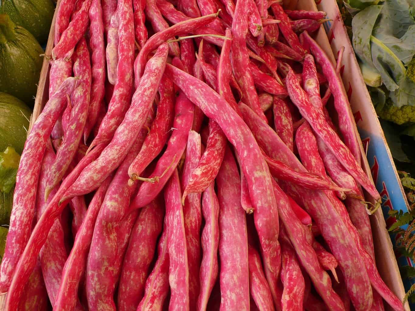 Temps trempage haricots rouges