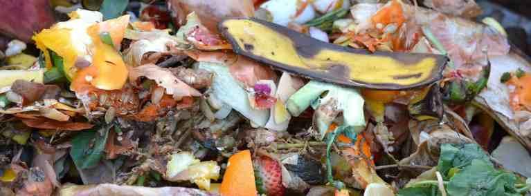 compost-avant le bokashi