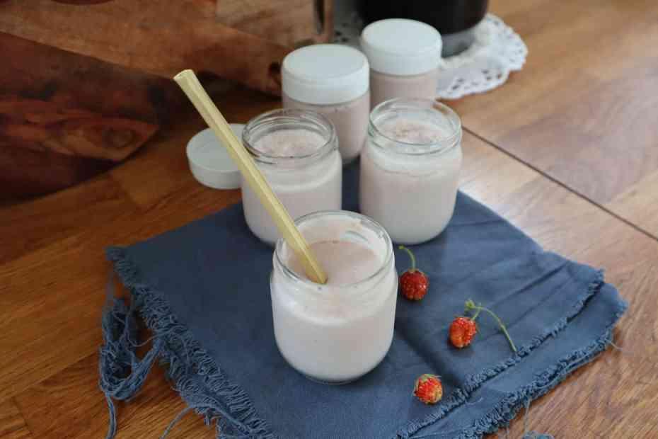 Yop maison sans lactose